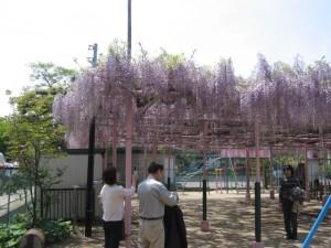 fuji010